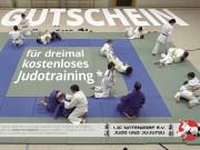 Judoclub Nittendorf e. V. : Flyer